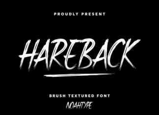Hareback Brush Font