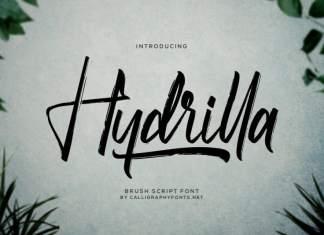 Hydrilla Textured Brush Font