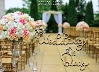 Wedding Day ,Script Font