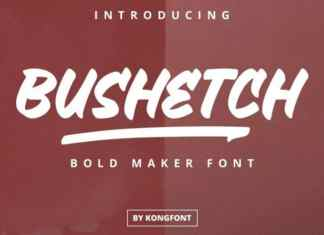 Bushetch Brush Font