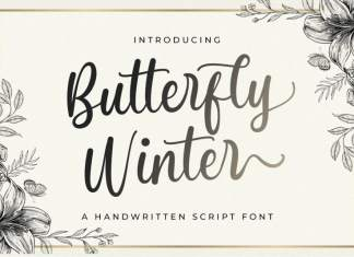 Butterfly Winter Script Font