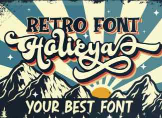 Holicya Script Font