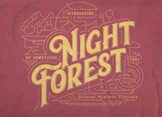 Night Forest Display Font