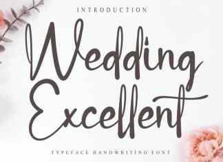 Wedding Excellent Script Font