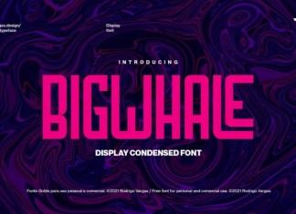 Bigwhale Display Font
