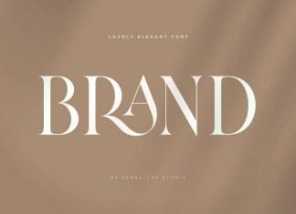 Brand Serif Font