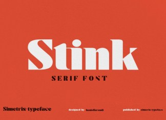 Stink Serif Font