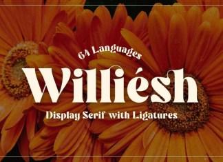 Williesh Serif Font