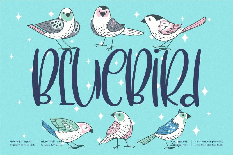 BlueBird Display Font