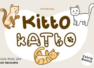 Kitto Regular Display Font