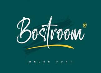Bostroom Brush Font