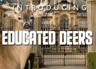 Educated Deers Display Font