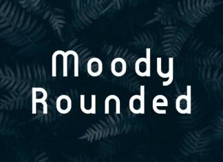Moody Rounded Sans Serif Font