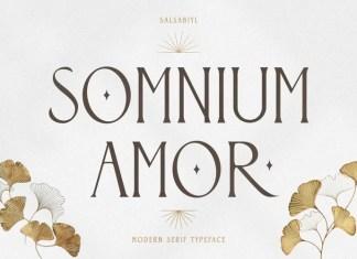 Somnium Amor Serif Font