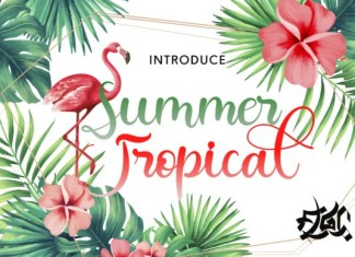 Summer Tropical Calligraphy Font