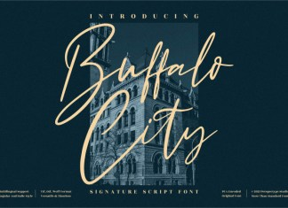 Buffalo City Script Font