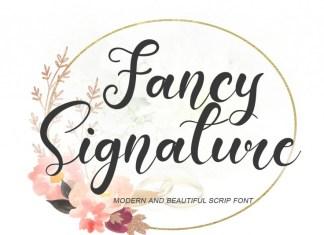 Fancy Signature Script Font
