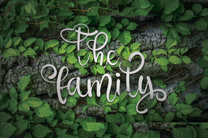 The Family Calligraphy Font