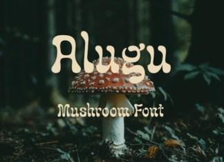 Alugu Display Font