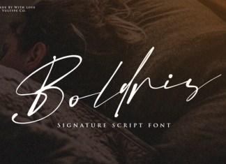 Boldris Script Font