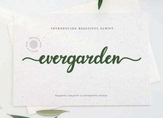 Evergarden Script Font