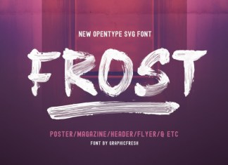 Frost Vector Brush Font