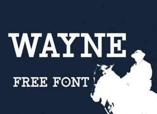 Wayne Slab Serif Font