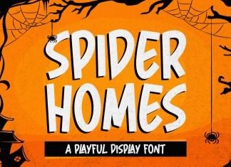 Spider Home Display Font