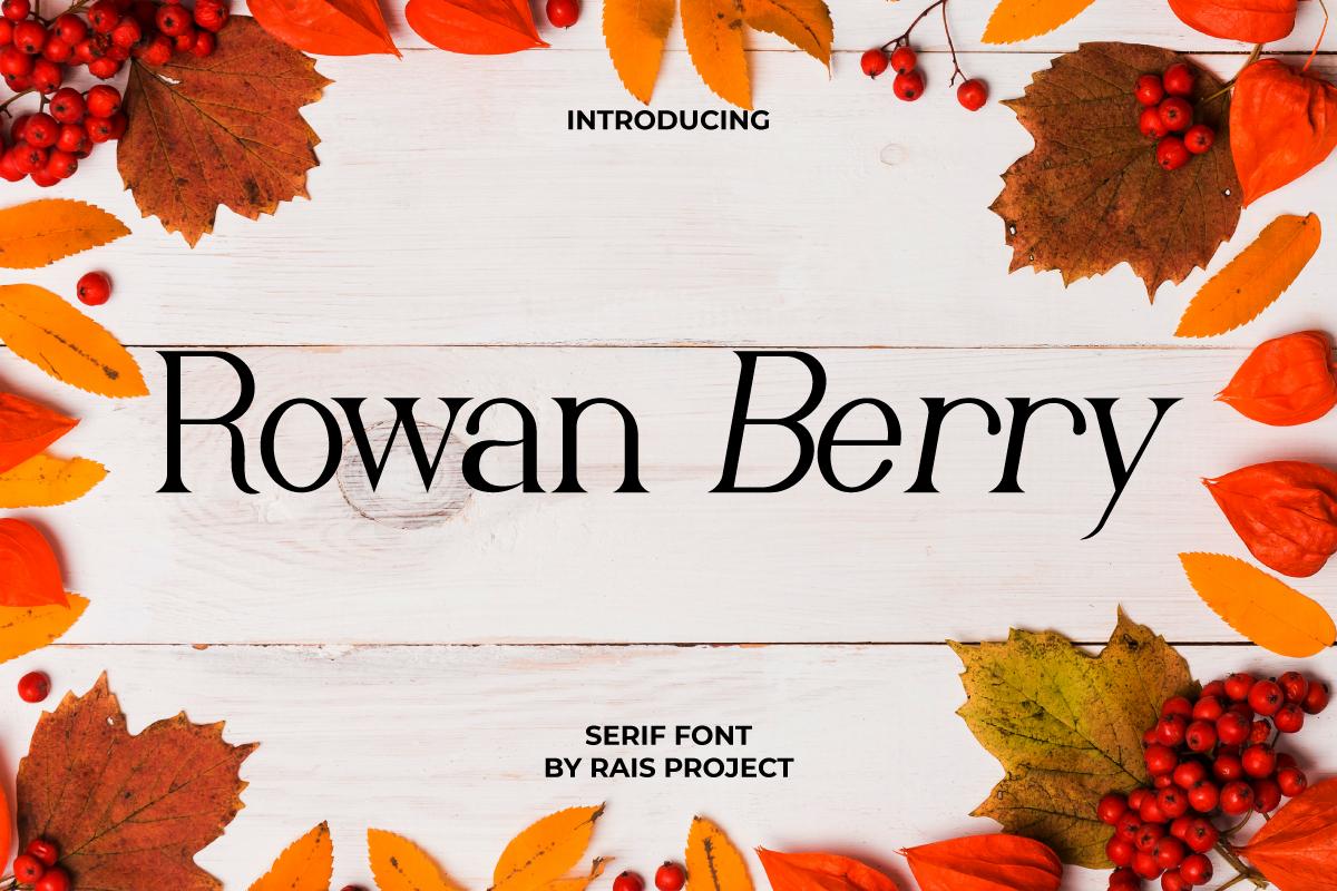 Rowan Berry Serif Font