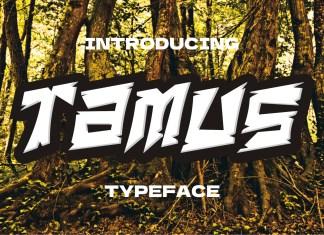 Tamus Display Font