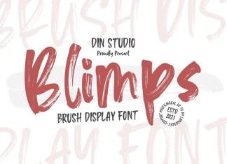 Blimps Brush Font