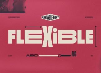 Flexible Sans Serif Font