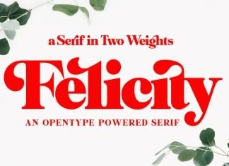 Felicity Serif Font