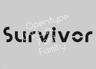 PVF Survivor Display Font