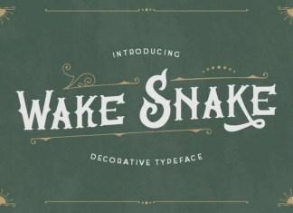 Wake Snake Display Font