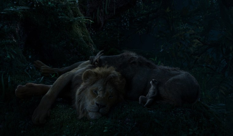 Simba and the others rest easy in their idyllic setting.
