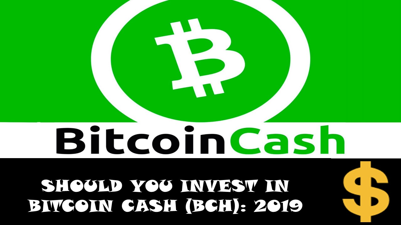 Should you invest in Bitcoin Cash Bch