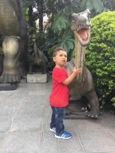 explora-dino-niño-animales