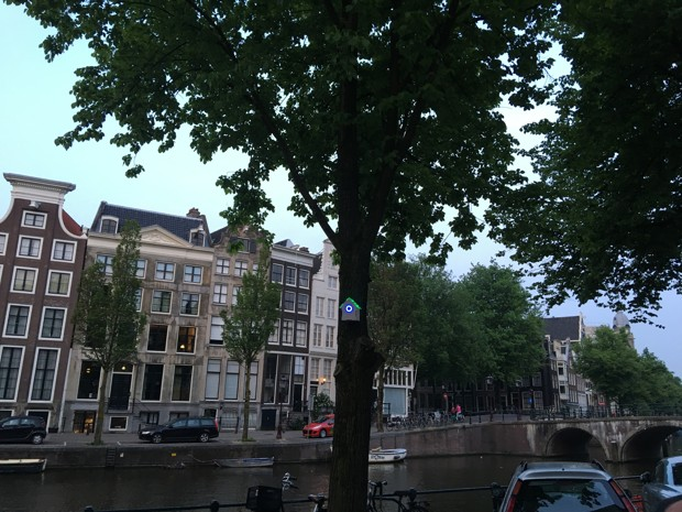 Green Birdhouse Amesterdam