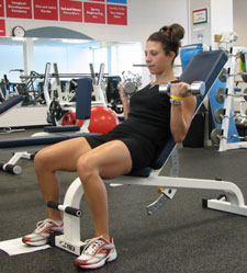 Seated Bicep Curl Incline Bench Dumbbell