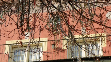 remnants of Mardi Gra decorate the trees in Downtown Mobile, Alabama