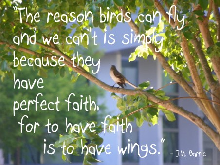 birds have wings