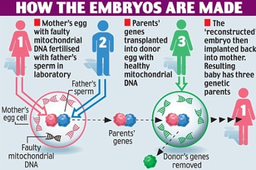 Child with DNA of 3 parents| Designer Babies Illuminati Eugenics.