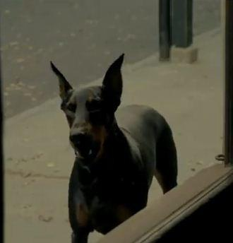 Mercedes Benz Satanic Super Bowl Commercial   Deal with the Devil Hell hound.