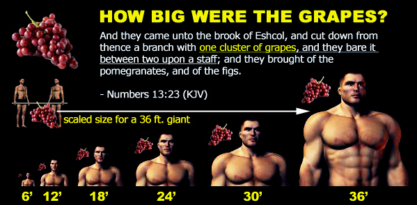 Were there really giants in the Bible | Watchers Enoch Ancient aliens