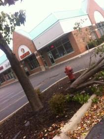 Wow it was like half the tree was gone