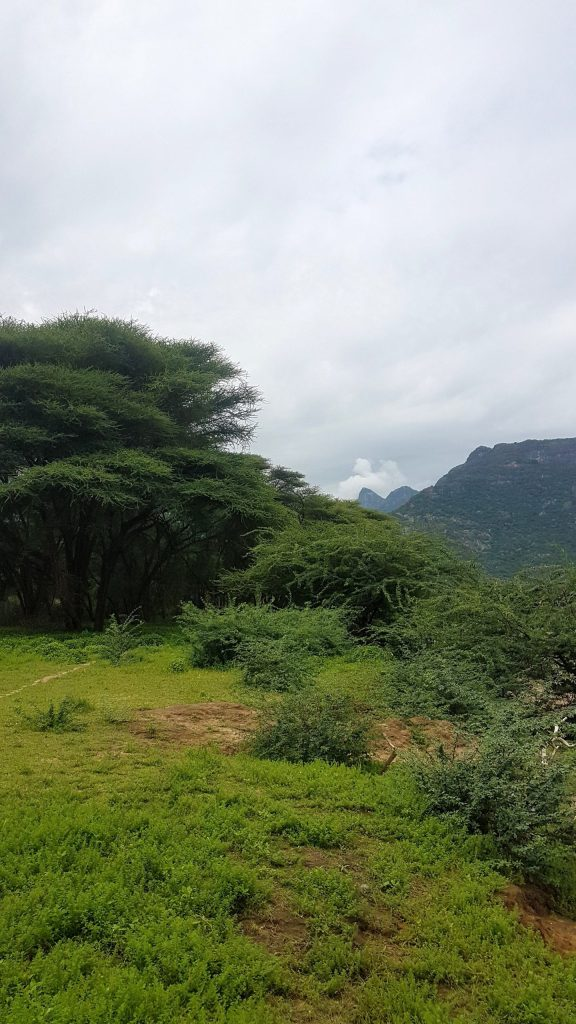 Ngurunit, breathtaking hiking trails