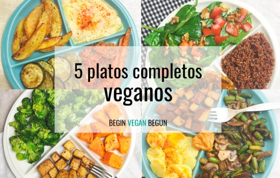 5 platos completos veganos (plato Harvard)