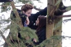 Twilight- Resimleri (25)
