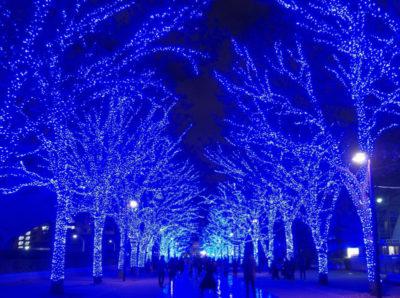 渋谷公園通りの青の洞窟